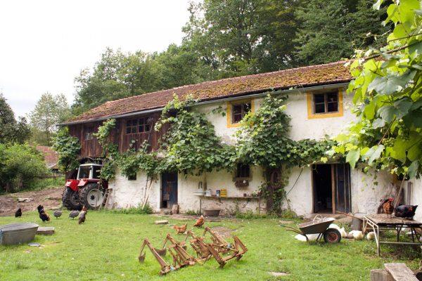 Ferienwohnung Höllbachtal Naturpark Bayerischer Wald